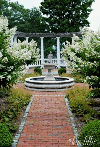 amenajarea unei gradini elegante2