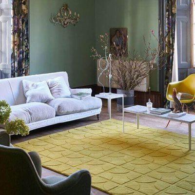 culoarea covorului in living5