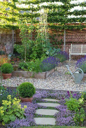 gradini cu flori, fructe si legume3