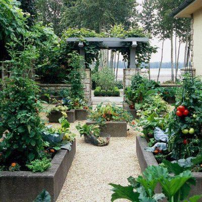 gradini cu flori, fructe si legume5