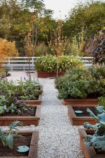gradini cu flori, fructe si legume6